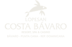 Logo Lopesan Group